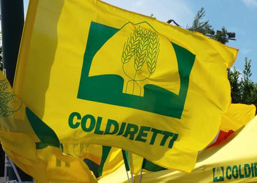 Coldiretti, il presidente nazionale Prandini a Varese: «Agricoltura motore di sviluppo»
