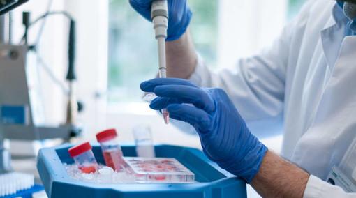 Coronavirus, i dati di sabato 30 gennaio: nel Varesotto 265 contagi. Varese +16, Busto +35, Gallarate +8, Saronno +11