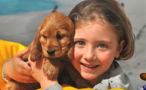Immagine tratta dalla campagna contro l'abbandono di animali domestici promossa dai comuni di Gorla Maggiore e Olgiate Olona