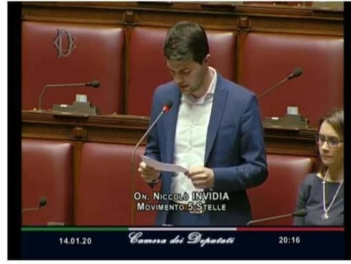 Niccolò Invidia