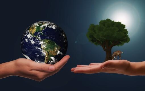Dalla sostenibilità ambientale allo sviluppo digitale: le opportunità per le imprese