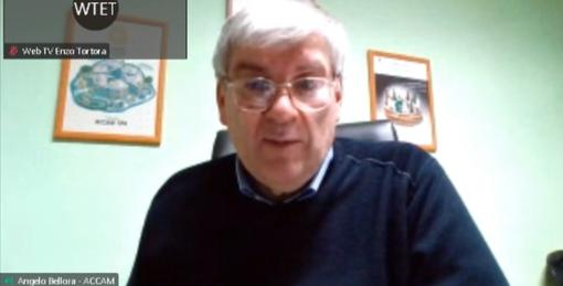 Il presidente di Accam, Angelo Bellora, ascoltato in commissione