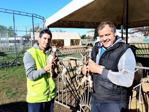Il dono di Manuel Bongini e degli agricoltori parabiaghesi al Circo Kino