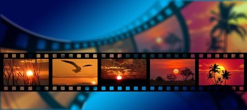Cinema d'estate a Busto: lo schermo illuminato, il fresco della notte, gli occhi sgranati fra buio e luce