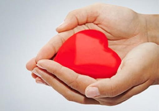 Plasma «prezioso più dell'oro»: il messaggio e il ringraziamento dei donatori Avis di Fagnano Olona