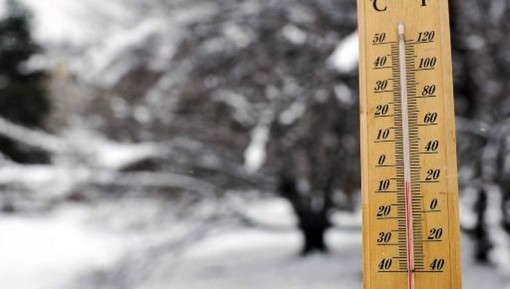 """Varese: Maltempo, arriva il gelo. """"Sos"""" per ortofrutta e alberi in fioritura"""