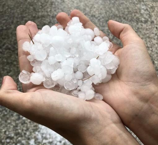 Coldiretti Varese conta i danni: quattro grandinate estive hanno hanno distrutto orti, cereali e frutta