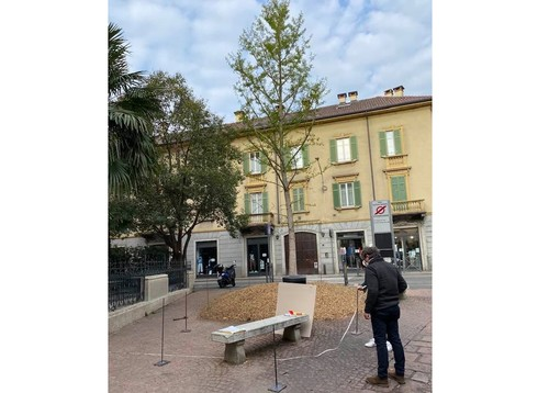 """Lavori in corso in via Veratti, si disegna la """"casa"""" del nuovo piantone"""