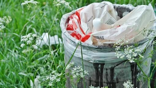 Pulire e rinnovare: a Castellanza tutti a liberare i boschi dai rifiuti