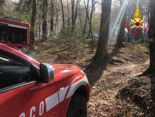 VIDEO. Marchirolo, bosco in fiamme in via Pietro Bozzolo, presidio dei vigili del fuoco per tutta la notte