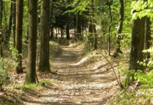Il percorso Vassallo: come riscoprire la Valle e anche noi stessi